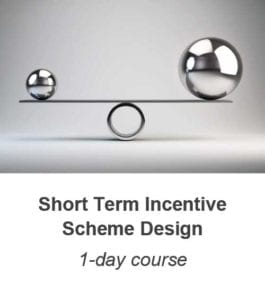 Short Term Incentive Scheme Design training course